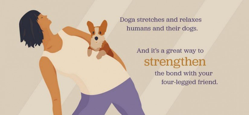 Dog and yoga the perfect way to bond with your pet