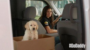 Godaddy puppy love commercial