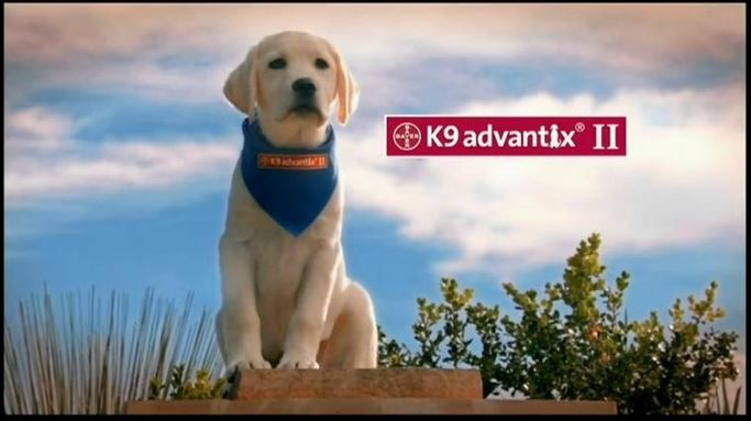 K9 advantix II tv commercial
